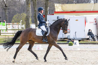 Münster-Handorf: Second rank for Only Follow Me FE