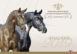 Stallion catalogue 2019 online!
