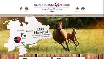 Oldenburger Pferde aus dem Hasetal