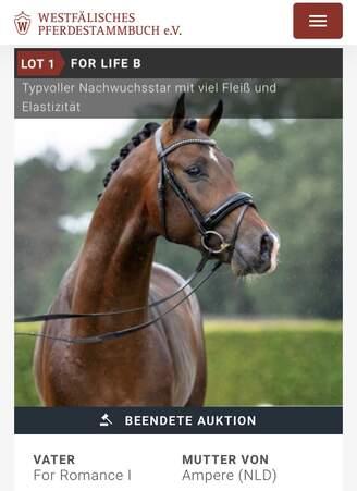 Münster: For Romance stellt Preisspitze