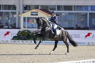Hagen: Excellent performance of DANTE WELTINO OLD