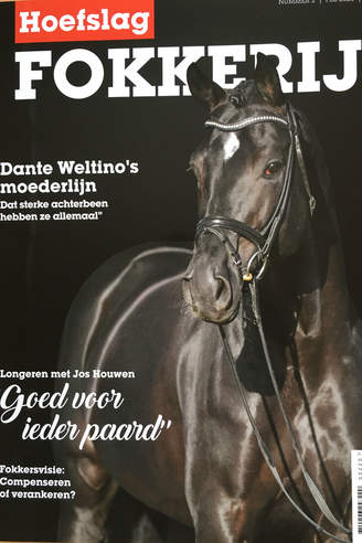 Dante Weltino OLD on the cover